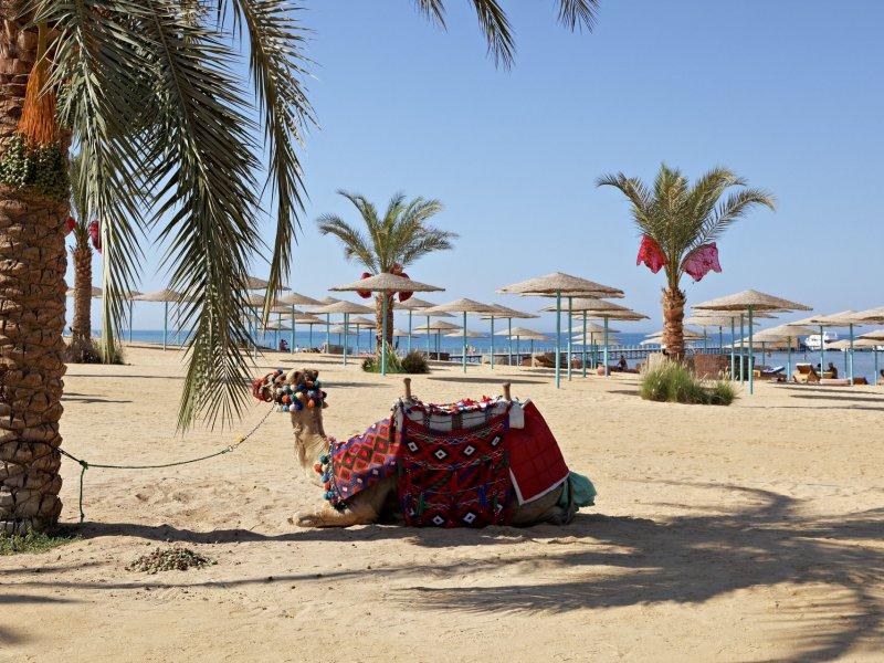 Three Corners Sunny Beach Resort - 6 Popup navigation
